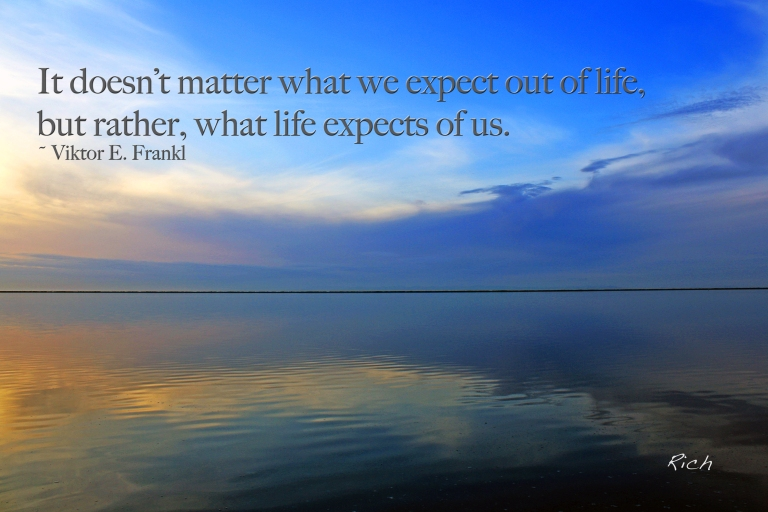 What Life Expects