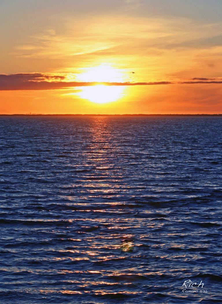 The Sun's Splendor