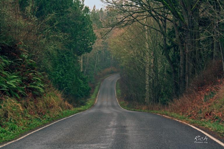 A Country Lane