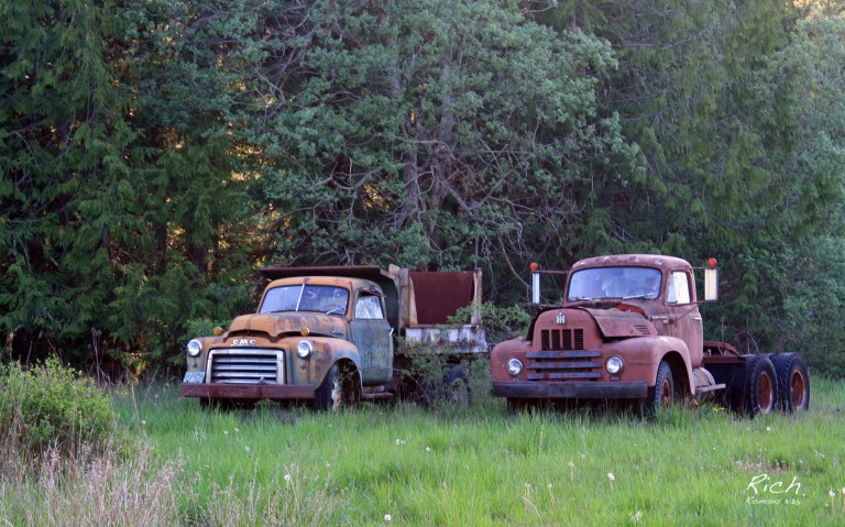Old Workhorses